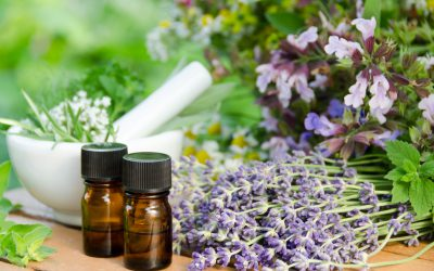 Which is the Best Aromatherapy Diffuser for Your Home?